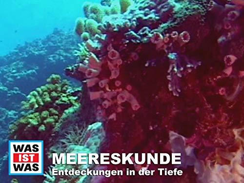 Meereskunde - Entdeckungen in der Tiefe