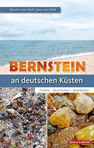 Bernstein an unseren Küsten: Finden – Bestimmen – Bearbeiten