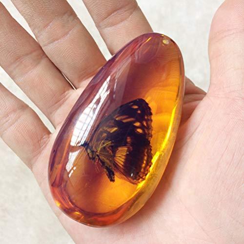 Garneck Kristall Bernstein Fossil mit Insekten in Proben Proben Steine ??Oval Anhänger Sammlung Hauptdekorationen Bildung Geschenk (zufälliges Muster)