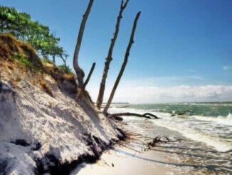 Ostsee Darß Küstenform