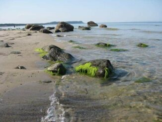 Ostsee Urlaub in Göhren 🇩🇪 Urlaubsorte