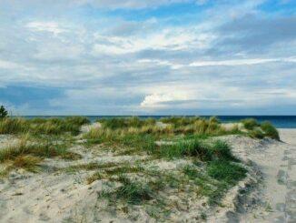 Ostseebad Prerow im Urlaub erleben 🇩🇪 Urlaubsorte