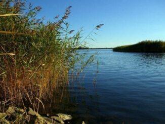 Nationalpark Vorpommersche Boddenlandschaft 🇩🇪 Ausflugsziele