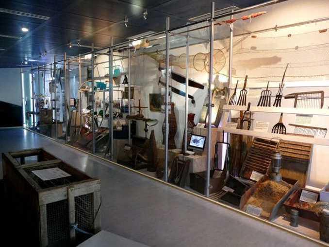 ostsee-erlebniswelt-aquarium-ausstellung-017