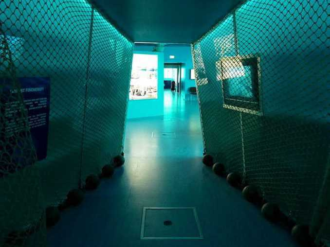 ostsee-erlebniswelt-aquarium-ausstellung-019
