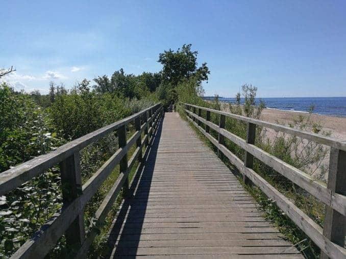 Hölzerne Brücke im Ekopark Wschodni Kolberg
