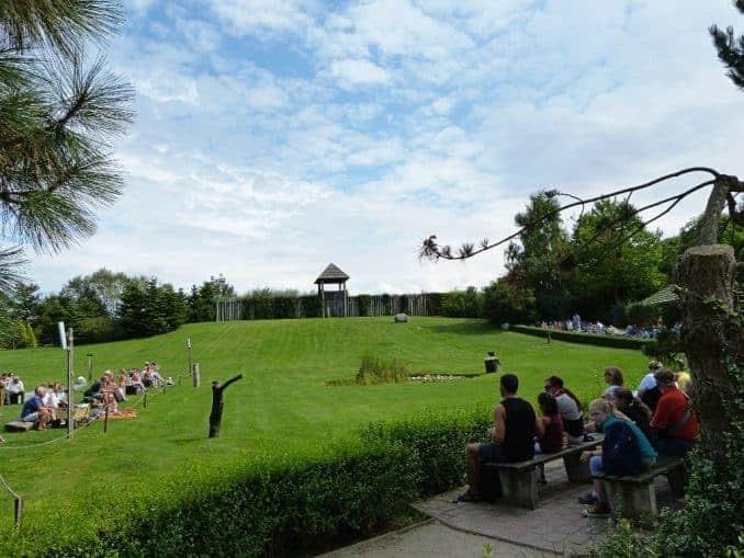 Flugflächen im Vogelpark Marlow