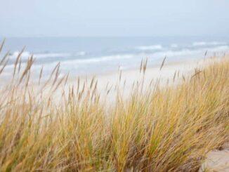 Deutsche Ostsee und Ostseeküste