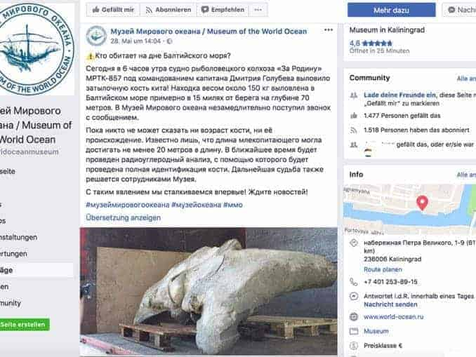 Facebook Screenshot Museum Kaliningrad Knochenfund