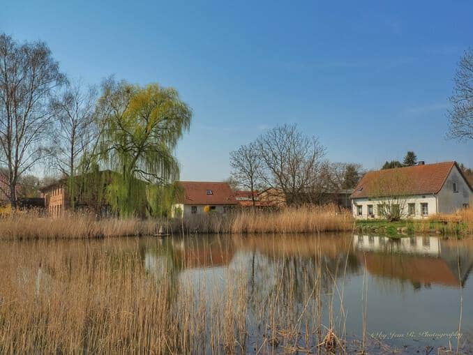 Teich in Stolpe