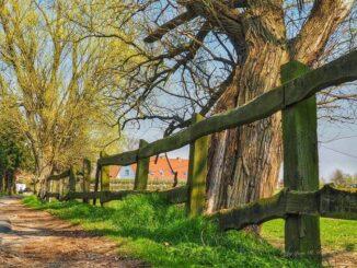 Stolpe auf Usedom erleben 🇩🇪 Urlaubsorte