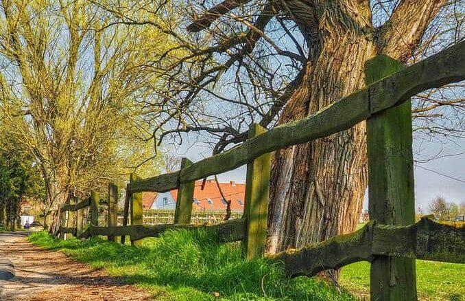 Stolpe auf Usedom / Mecklenburg-Vorpommern / Deutsche Ostsee