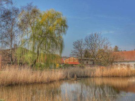 stolpe-usedom-7-445x334 Stolpe auf Usedom erleben 🇩🇪 Urlaubsorte