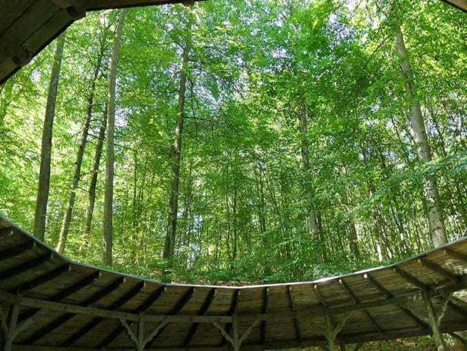 Blick aus dem Pavillon im Bismark Landgut Polen