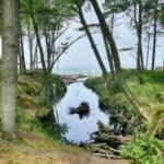 Steilküste in Orzechowo Polnische Ostsee 🇵🇱 Ausflugsziele