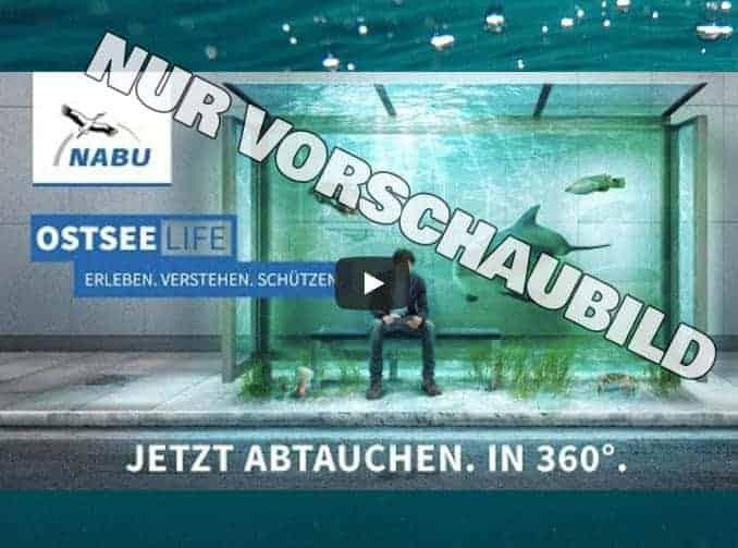 Virtuelle Realität Ostsee / OstseeLIFE / NABU