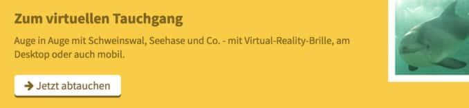 virtueller-tauchgang Virtuelle Realität Ostsee   OstseeLIFE Umfragen, Wissen & Informationen