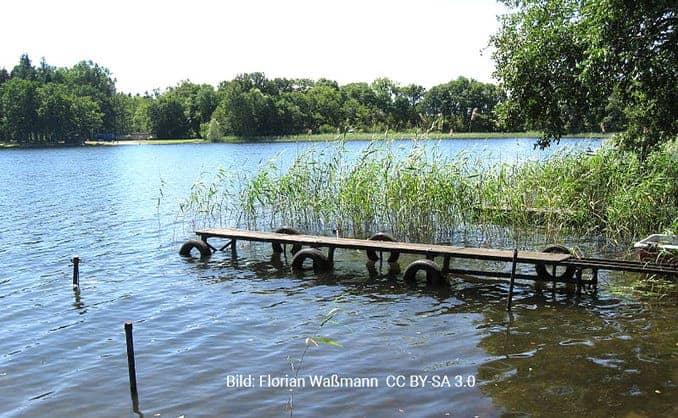Pinnower See (Lassaner Winkel)