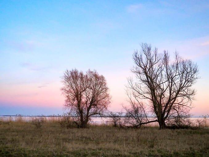 Sonnenaufgang auf Gnitz (Usedom)