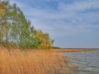 Halbinsel Gnitz (Usedom) Achterwasser