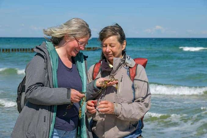 Frauen an der Ostsee bei einer Strandführung