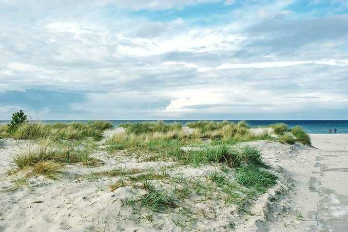 Fischland-Darss-Zingst-Bild-12