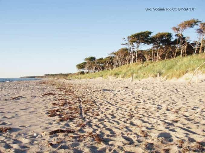 Westküste der Halbinsel Darß