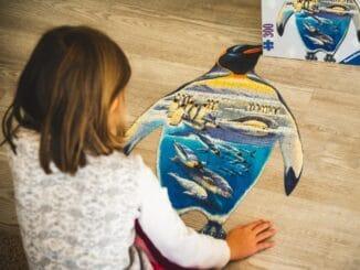 Die schönsten Ostsee Puzzle