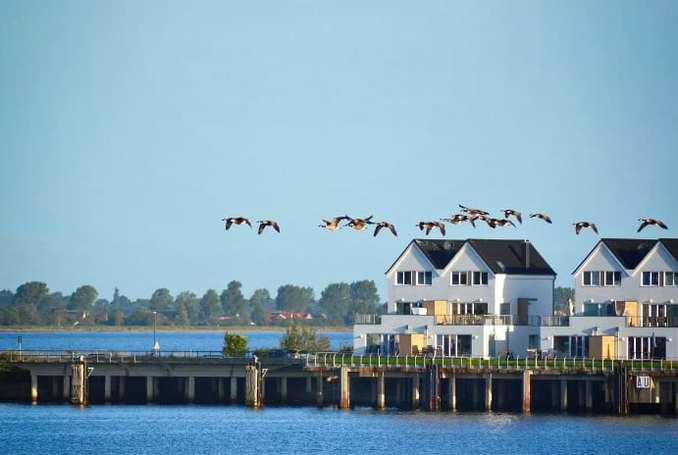 Ferienhäuser in der 1. Reihe am Wasser Ostsee Resort Olpenitz